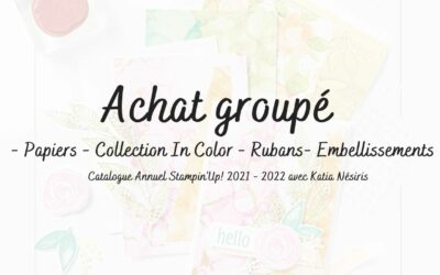 Achat groupé du catalogue annuel de Stampin'up